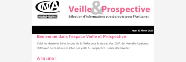 """La newsletter """"Veille et prospective"""" pour l'#artisanat est sortie ! [#1 - Février 2020)"""