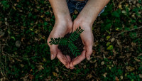 Etude spéciale COVID-19  : écologie et comportement des Français