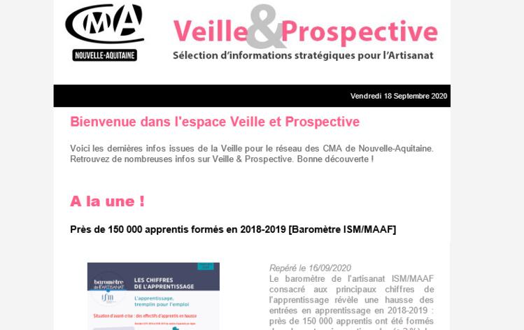 """Sortie de la newsletter """"Veille et prospective"""" pour l'#artisanat ! [#2 - Septembre 2020)"""