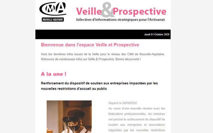 """La newsletter """"Veille et prospective"""" pour l'#artisanat ! [#1 - Oct 2020) est sortie !"""