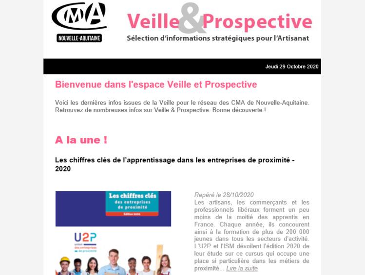 """Sortie de la newsletter """"Veille et prospective"""" pour l'#artisanat ! [#3 - Oct 2020)"""