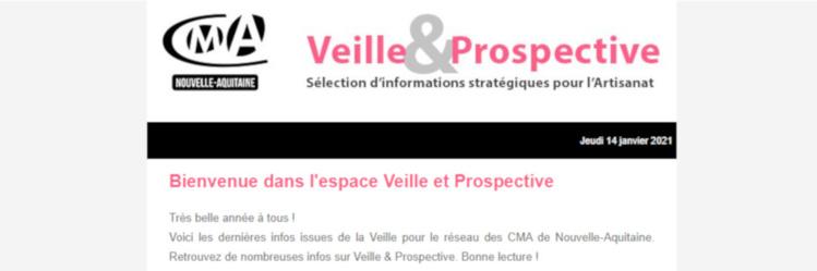 """La newsletter """"Veille et prospective"""" pour l'#artisanat est sortie ! [#1 - Janvier 2021)"""