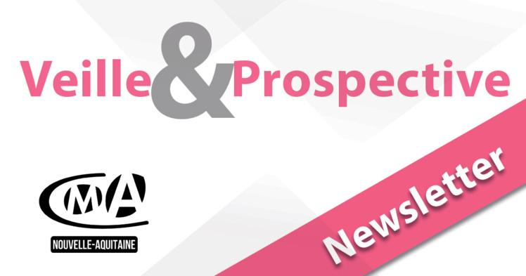 """Sortie de la newsletter """"Veille et prospective"""" pour l'#artisanat ! [#2 - Juin 2021)"""