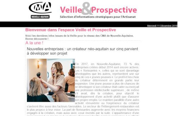 """La dernière newsletter """"Veille et prospective"""" pour l'#artisanat est sortie ! [#2 - Décembre 2019)"""