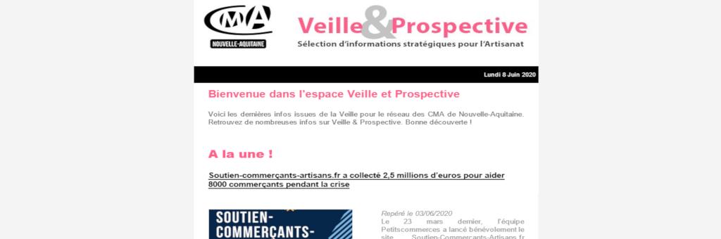 """La newsletter """"Veille et prospective"""" pour l'#artisanat est sortie ! [#1 - Juin 2020)"""