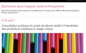 """Découvrez la dernière newsletter """"Veille et prospective"""" pour l'#artisanat ! [#1 - Août 2019)"""