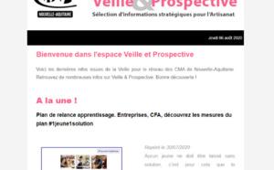 """La newsletter """"Veille et prospective"""" pour l'#artisanat est sortie ! [#1 - Août 2020)"""