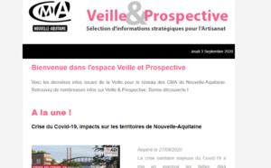 """Sortie de la newsletter """"Veille et prospective"""" pour l'#artisanat ! [#1 - Septembre 2020)"""