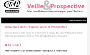 """Sortie de la newsletter """"Veille et prospective"""" pour l'#artisanat ! [#2 - Nov 2020)"""