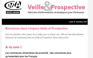 """Sortie de la newsletter """"Veille et prospective"""" pour l'#artisanat ! [#1 - Dec 2020)"""