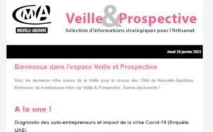 """La newsletter """"Veille et prospective"""" pour l'#artisanat est sortie ! [#2 - Janvier 2021)"""
