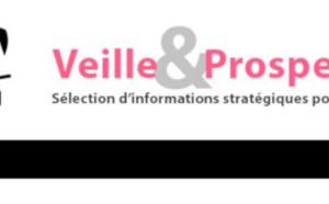"""Sortie de la newsletter """"Veille et prospective"""" pour l'#artisanat ! [#1 - Février 2021)"""