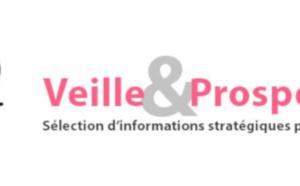 """Sortie de la newsletter """"Veille et prospective"""" pour l'#artisanat ! [#1 - Mars 2021)"""