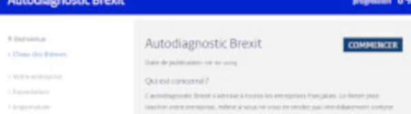 La DGE lance un outil d'autodiagnostic sur le Brexit à destination des entreprises