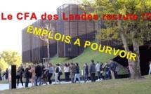 Emploi : le CFA des Landes recrute !