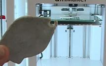 A Bayonne, une entreprise Repar'acteur donne une nouvelle vie aux objets grâce à l'impression 3D